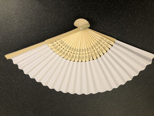 Paper and Bamboo Fan (unscented)